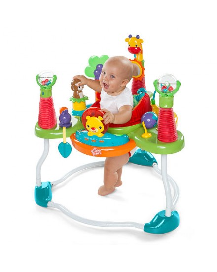 Bright Starts Jumperoo Having a ball